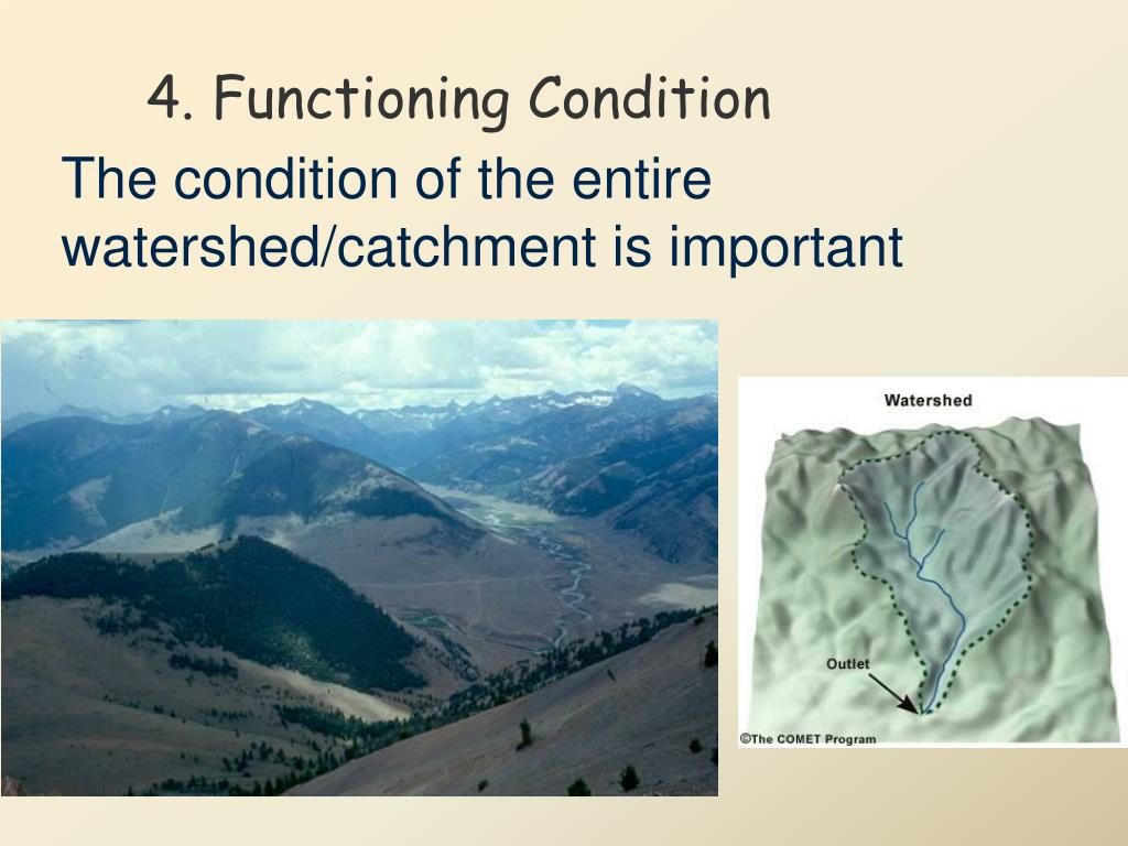 4. Functioning Condition