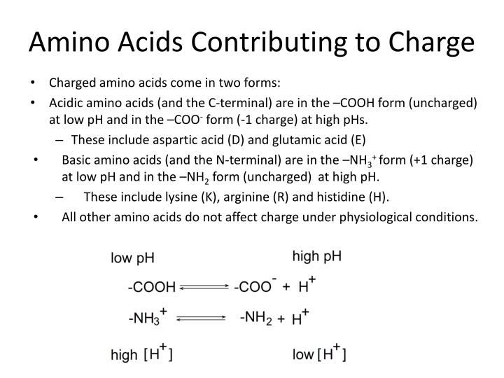 Amino acids contributing to charge