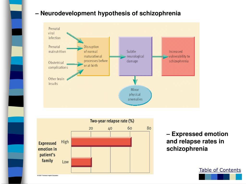 – Neurodevelopment hypothesis of schizophrenia