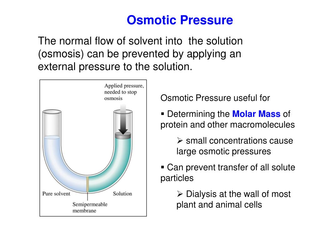 osmosis and osmotic pressure Water flow through semi-permeable membrane that blocks salts transport osmotic pressure on the free solution surface pumps the water.
