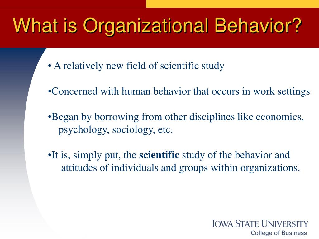 study of organizational behavior and the