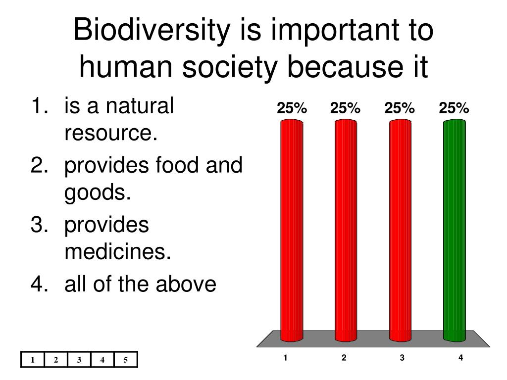 Biodiversity is important to human society because it