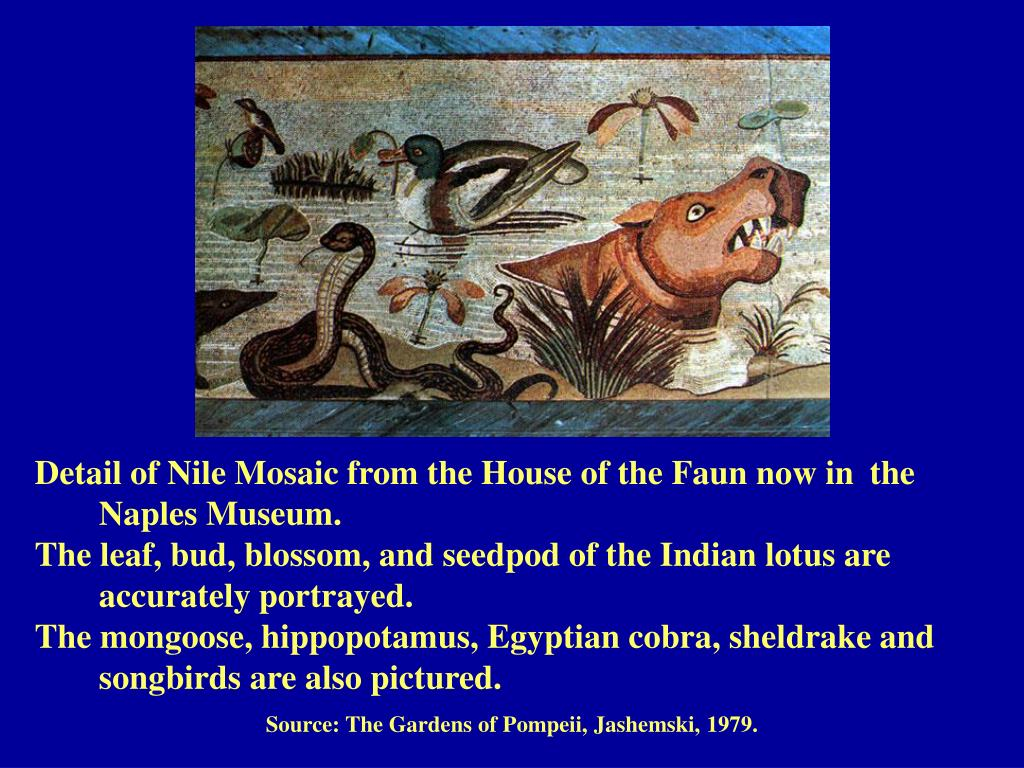 Detail of Nile Mosaic from the House of the Faun now in 	the 	Naples Museum.