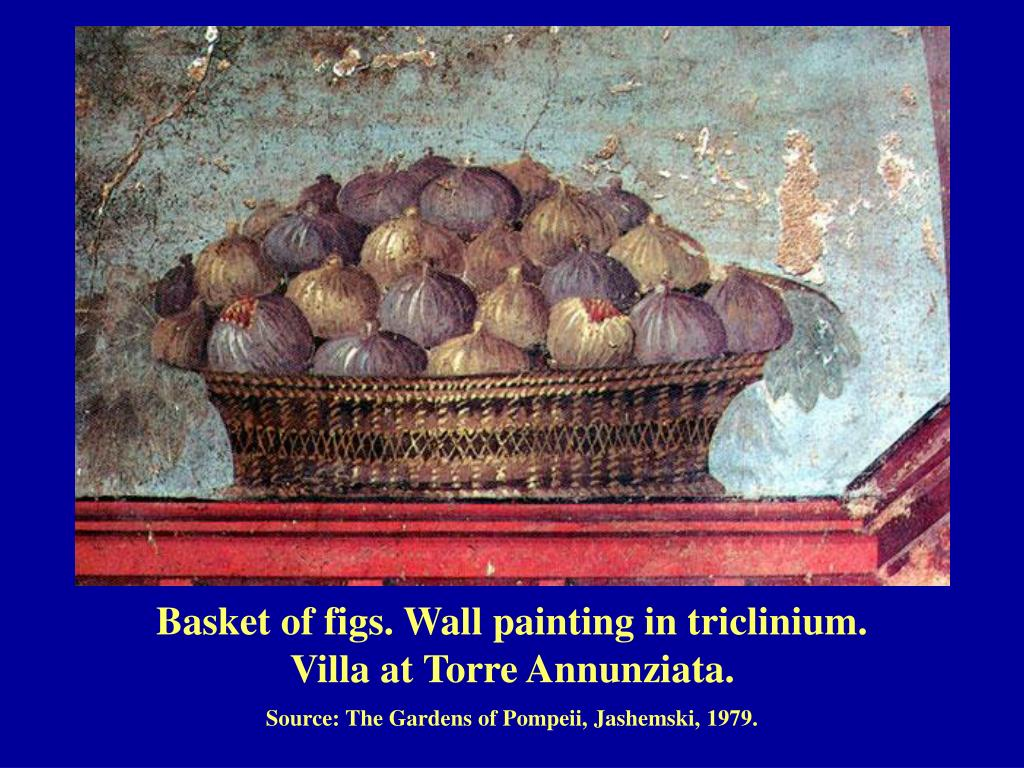 Basket of figs. Wall painting in triclinium.