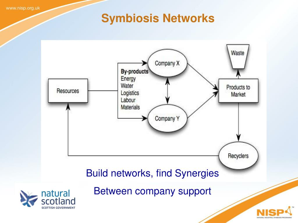 Symbiosis Networks