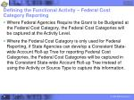 defining the functional activity federal cost category reporting