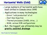 horizontal wells cold
