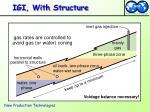 igi with structure