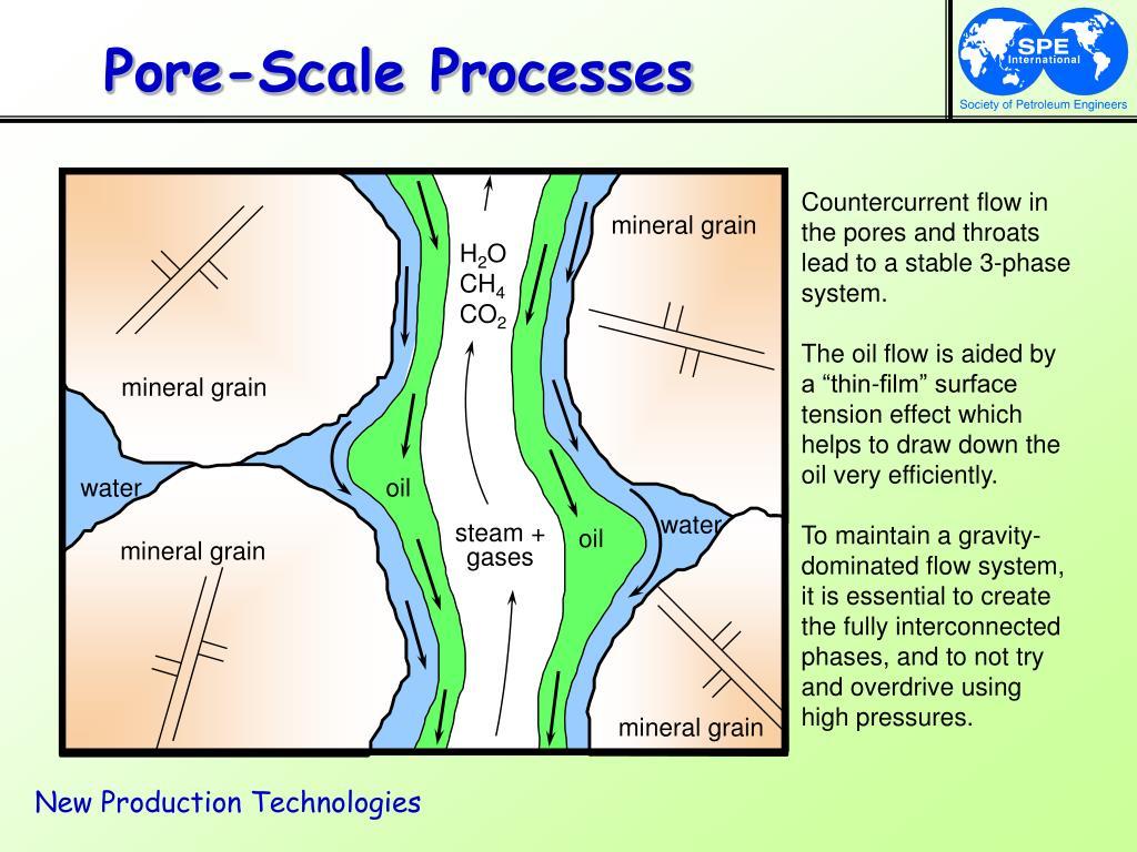 Pore-Scale Processes