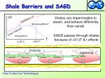 shale barriers and sagd
