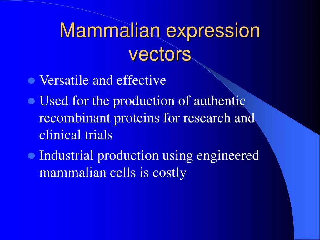 Mammalian expression vectors