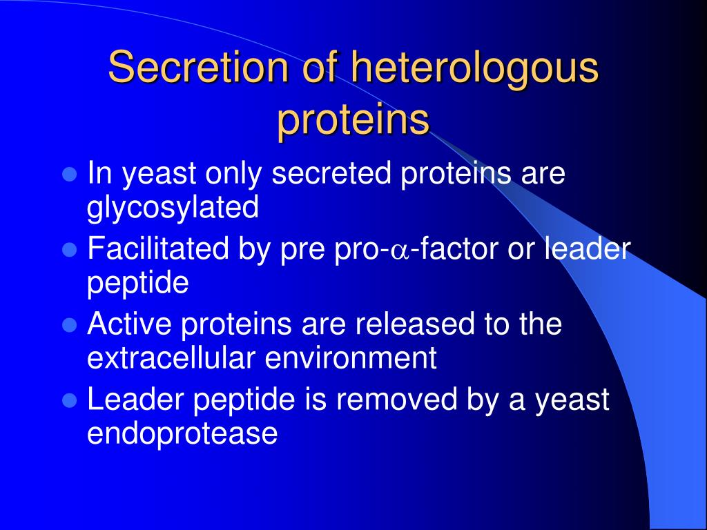 Secretion of heterologous proteins
