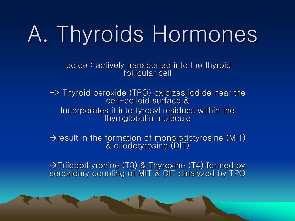 a thyroids hormones l.