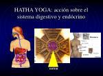 hatha yoga acci n sobre el sistema digestivo y end crino