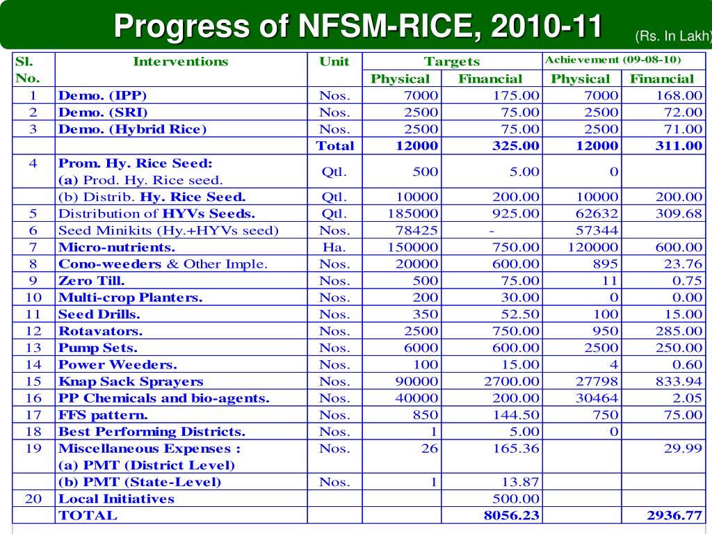 Progress of NFSM-RICE, 2010-11
