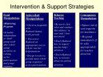 intervention support strategies