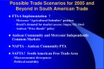 possible trade scenarios for 2005 and beyond in south american trade