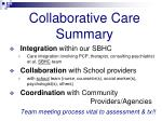 collaborative care summary