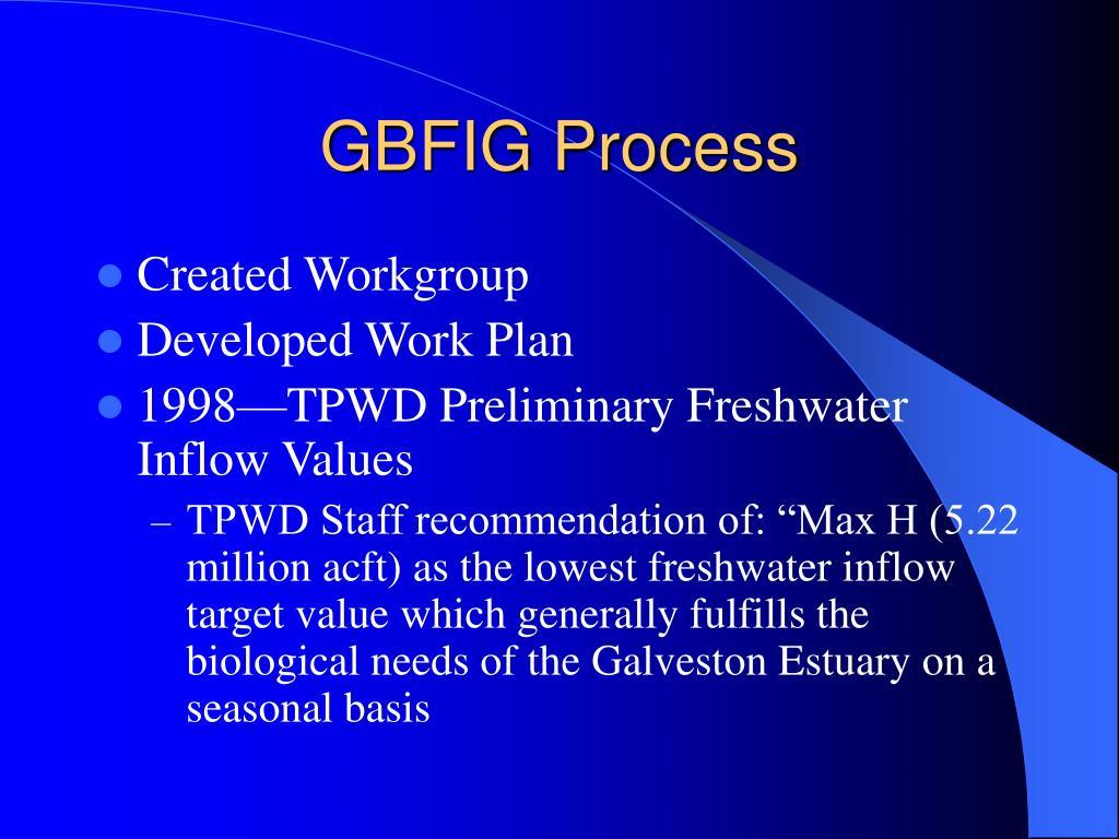 GBFIG Process