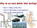why do we need mobile web surfing7