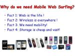 why do we need mobile web surfing8
