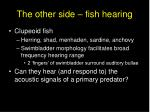 the other side fish hearing