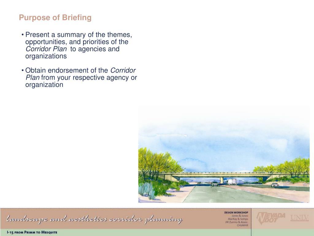 Purpose of Briefing