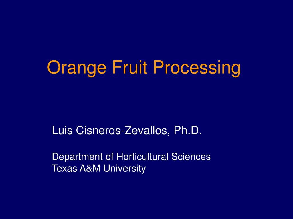 orange fruit processing l.