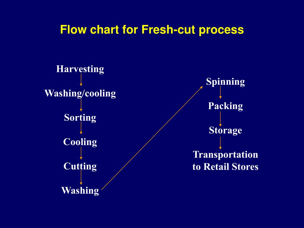 Flow chart for Fresh-cut process