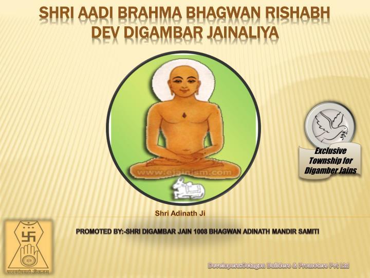shri aadi b rahma bhagwan rishabh dev digambar jainaliya n.