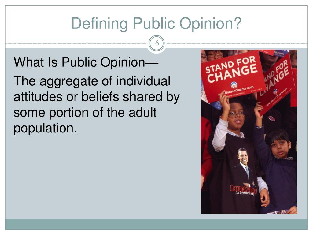 nop public opinion essay