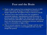fear and the brain4