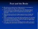 fear and the brain5