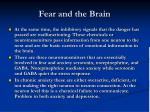 fear and the brain6