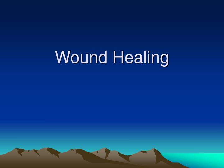 wound healing n.