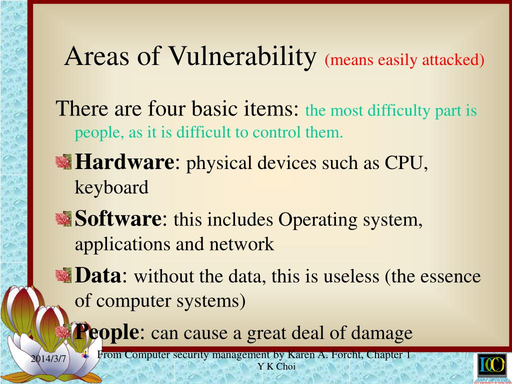 Areas of Vulnerability