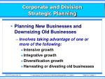 corporate and division strategic planning9