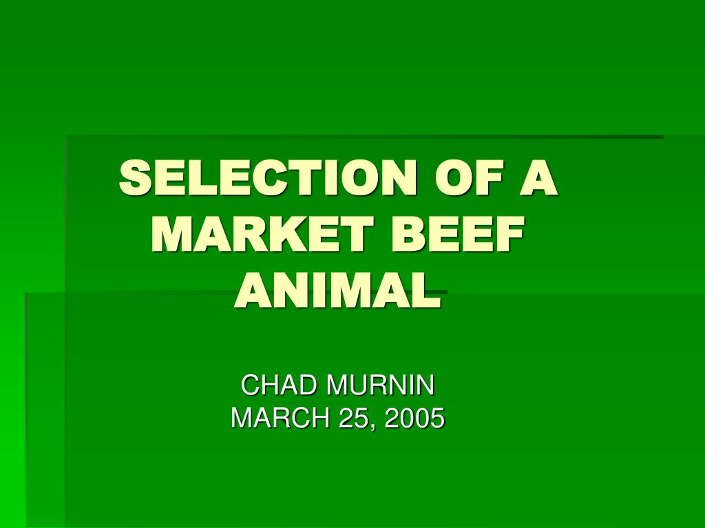 selection of a market beef animal l.