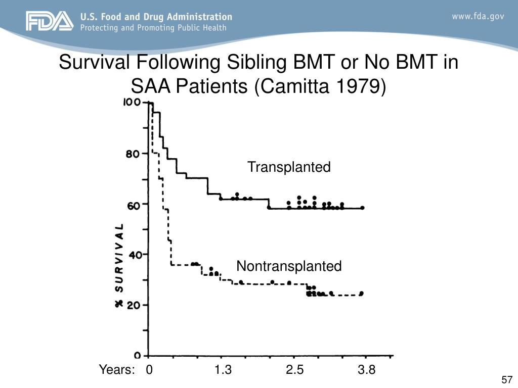 Survival Following Sibling BMT or No BMT in SAA Patients (Camitta 1979)