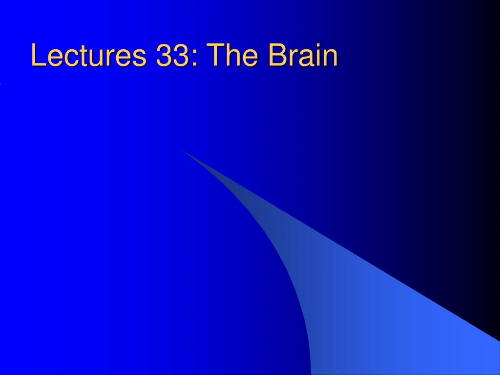 lectures 33 the brain l.