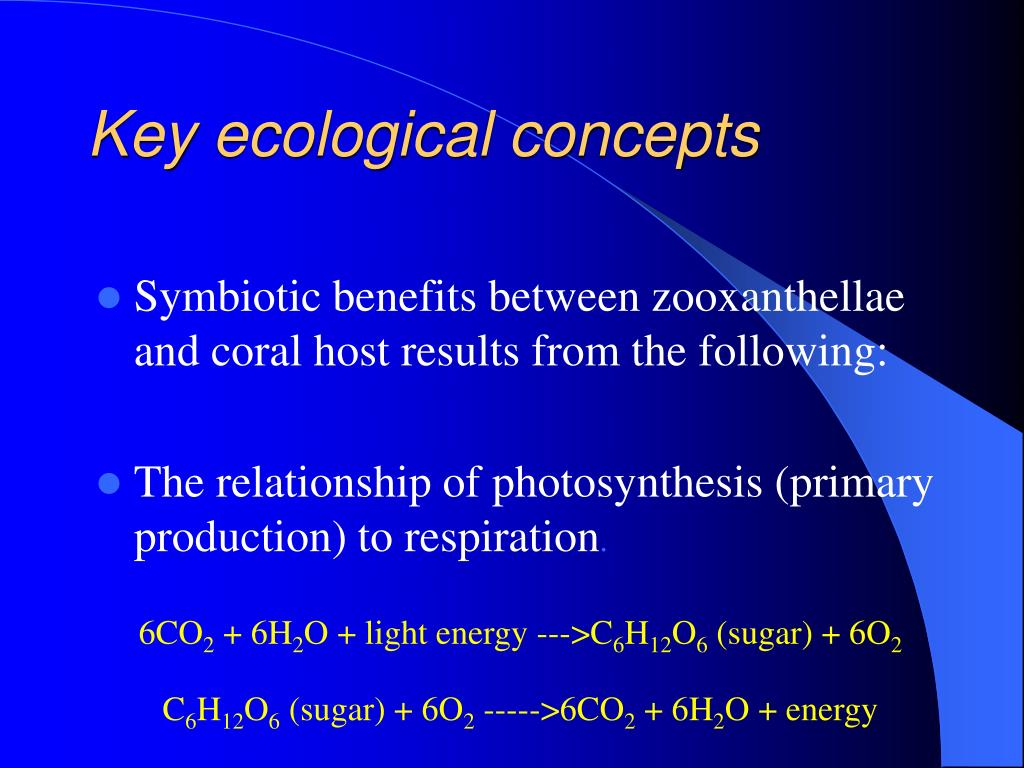 Key ecological concepts
