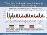 within firm productivity growth dominates at five year horizons in mfg
