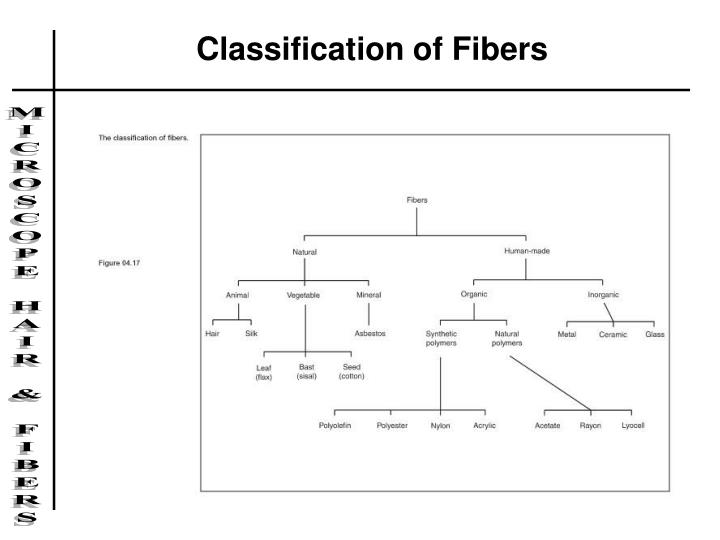 Classification of Fibers