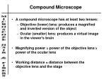 compound microscope1