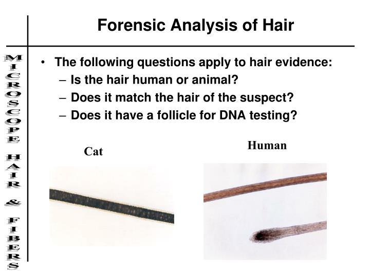 Forensic Analysis of Hair