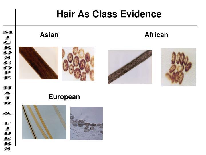 Hair As Class Evidence
