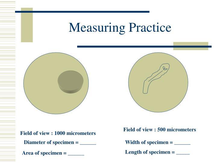 Measuring Practice
