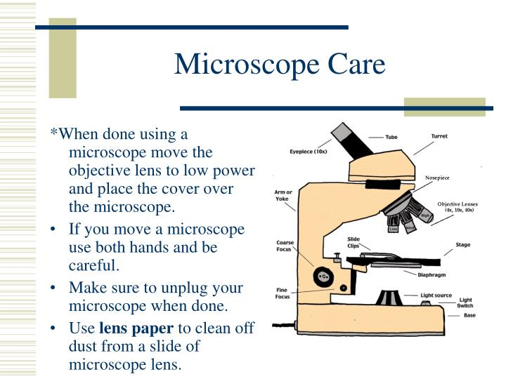 how to take care of the microscope