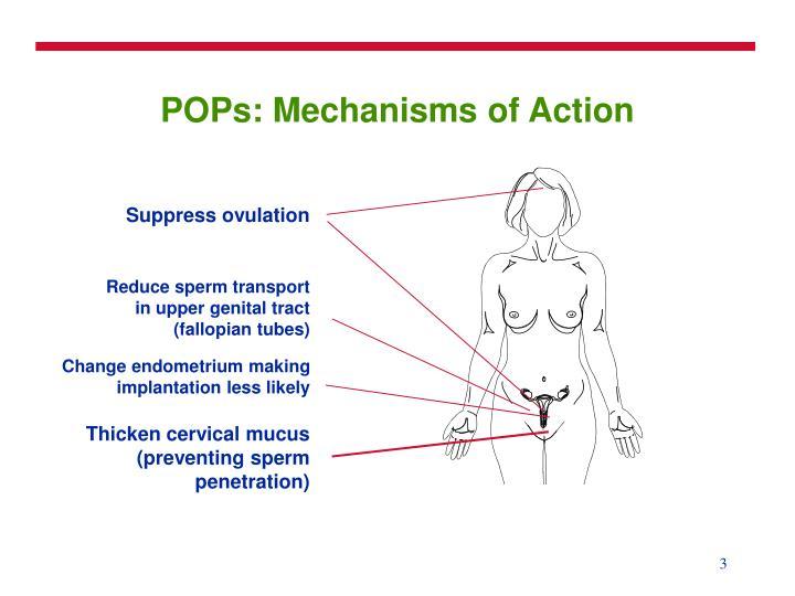 Pops mechanisms of action