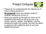 project critiques